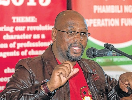 UNITY URGED: Cosatu president Sdumo Dlamini addresses a gathering of about 300 people in Port Elizabeth yesterday. Picture: MARK WEST