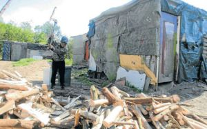 BATTLING TO SURVIVE: Bongani Nyati chops wood at the squatter camp concealed by bushes in Lorraine, Port Elizabeth Picture: FREDLIN ADRIAAN